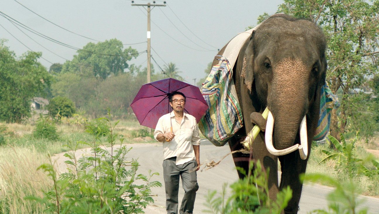 'Pop Aye' offers a new take on the elephantine issue of middle age