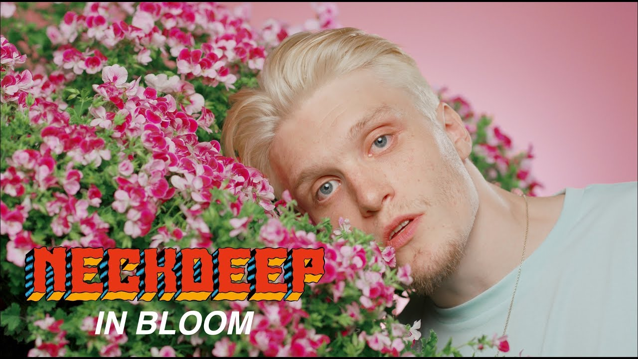 Neck Deep's new song arrives with an aesthetically pleasing music video