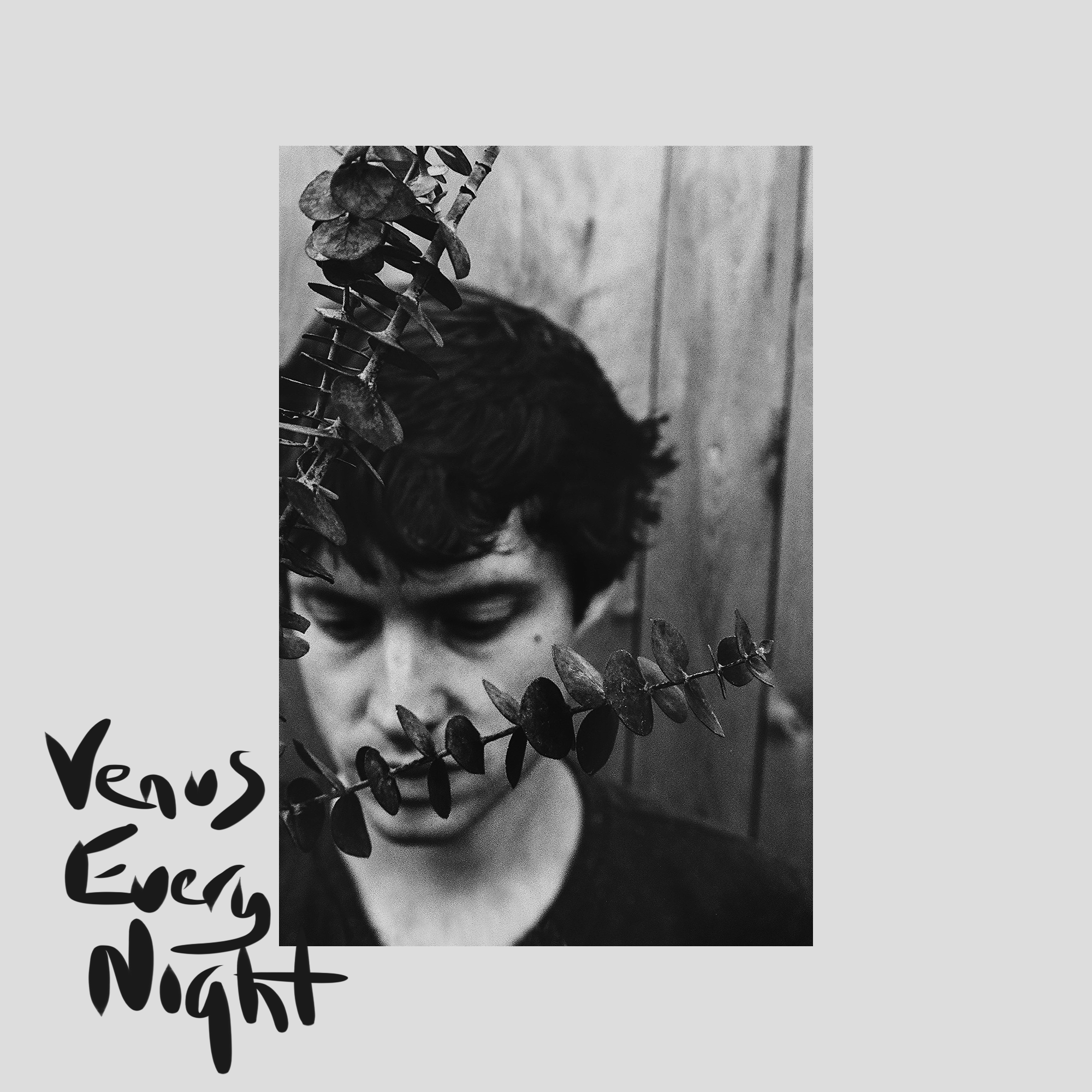 """PREMIERE: Tom Gallo reaches into the quiet cosmos on """"Venus Every Night"""""""