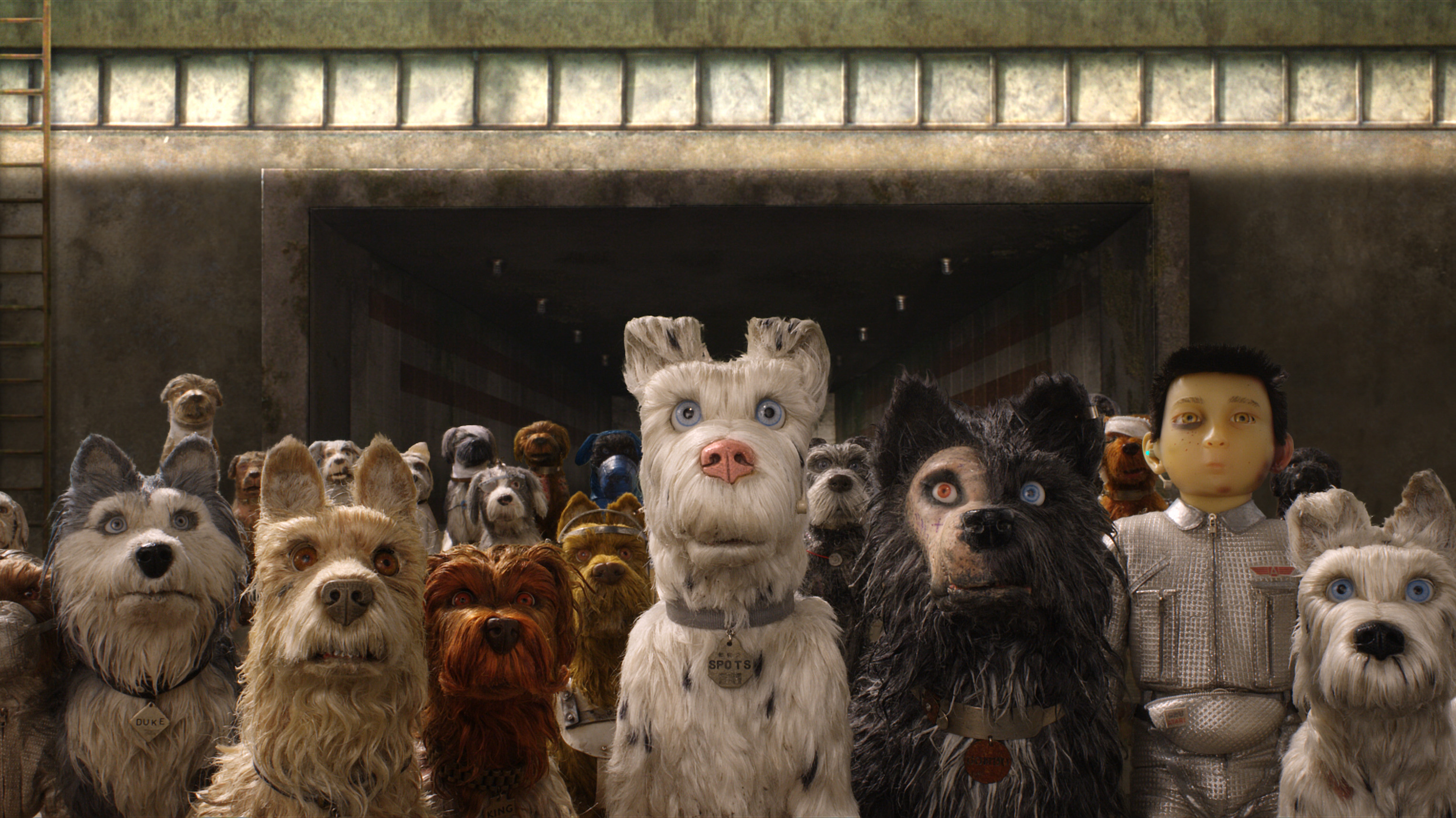 'Isle of Dogs' is breathtakingly gorgeous and very slighted