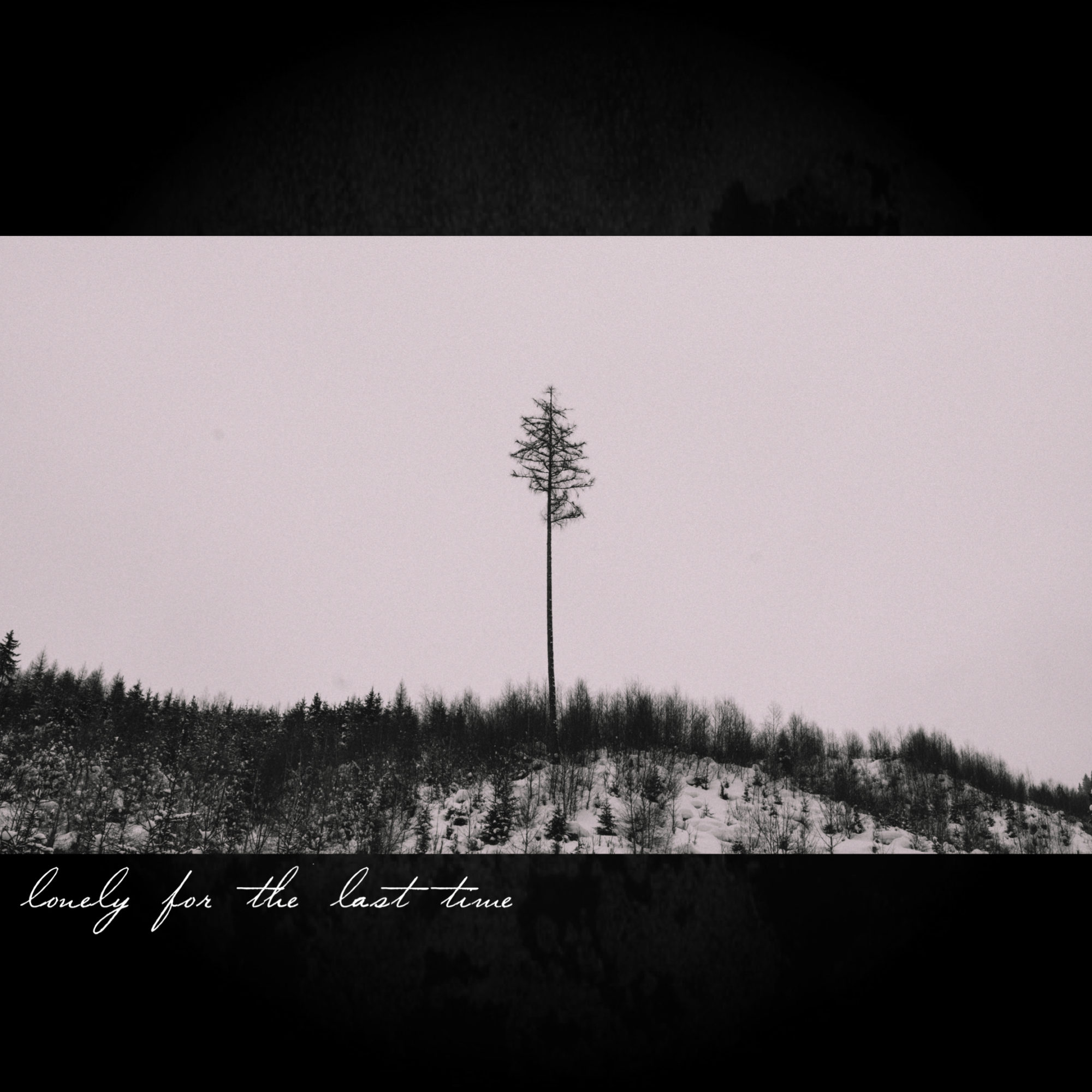 Lonely For the Last Time cover art