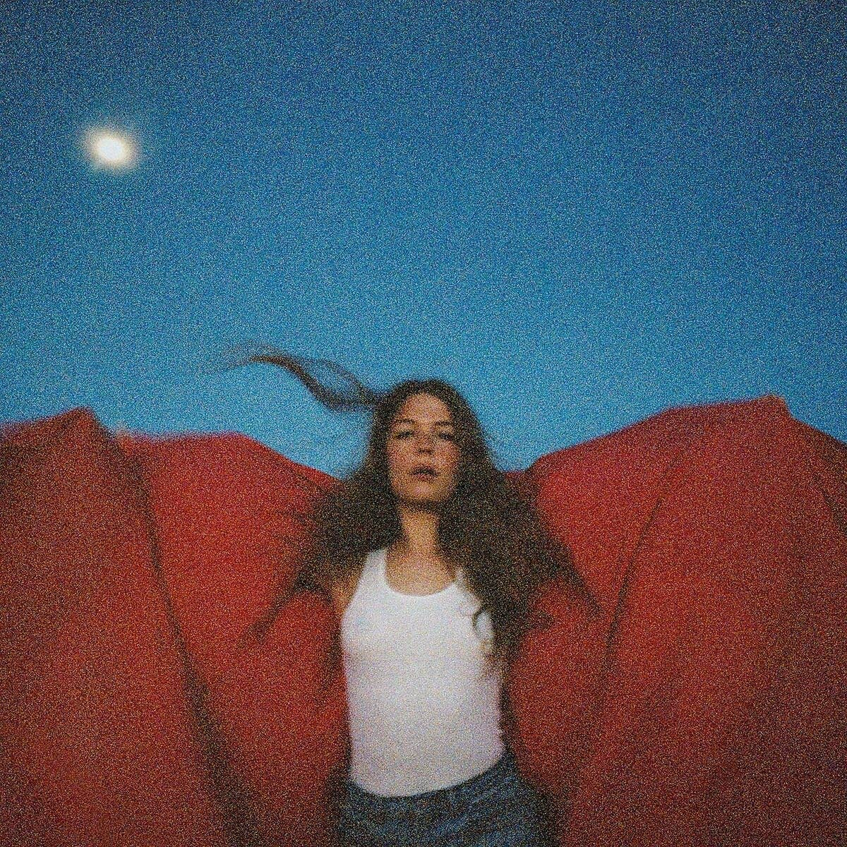 """Maggie Rogers masterfully tackles the memories of her past on """"Heard It In A Past Life"""""""