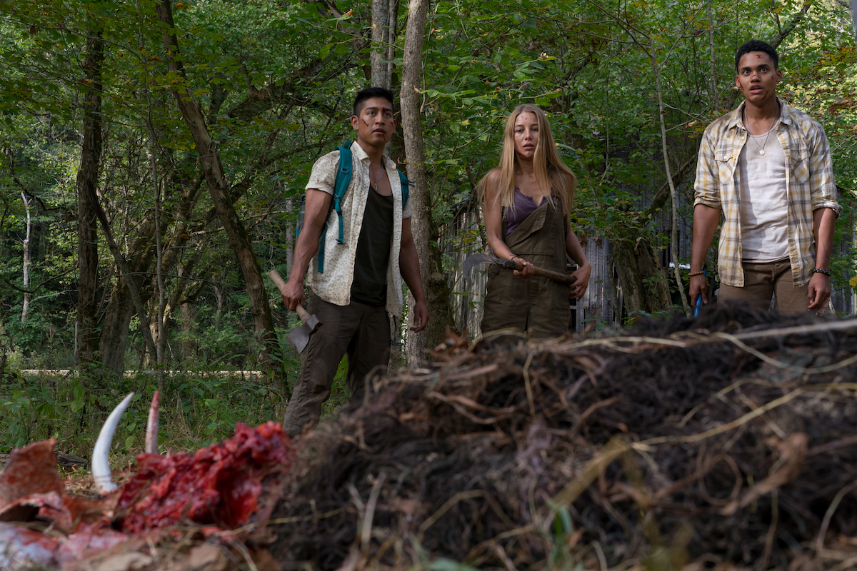 INTERVIEW: Director Mike P. Nelson of 'Wrong Turn' (Reboot) | Substream  Magazine
